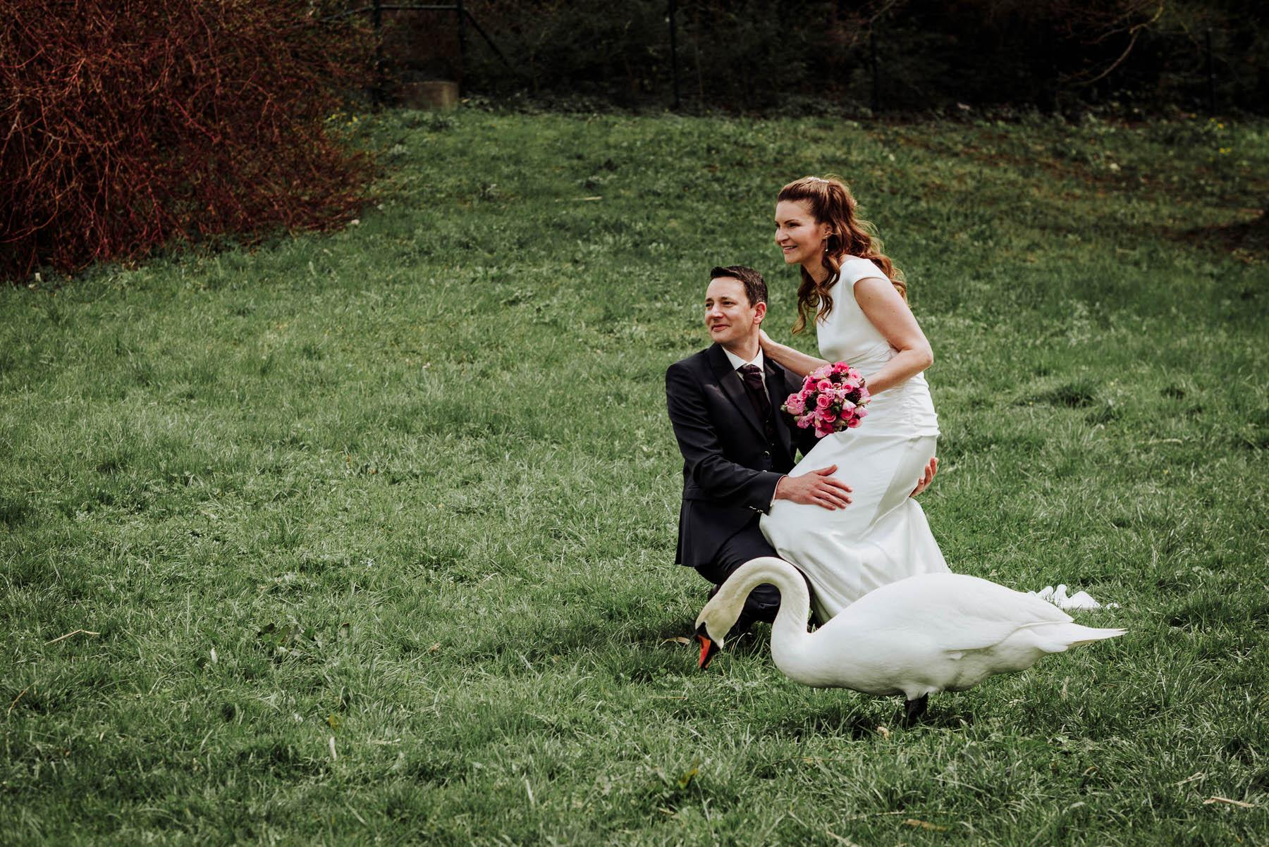 Brautpaar mit Schwan